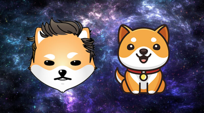As DOGE, SHIB Markets Fall Back Baby Doge Coin and Dogelon Mars Prices Skyrocket